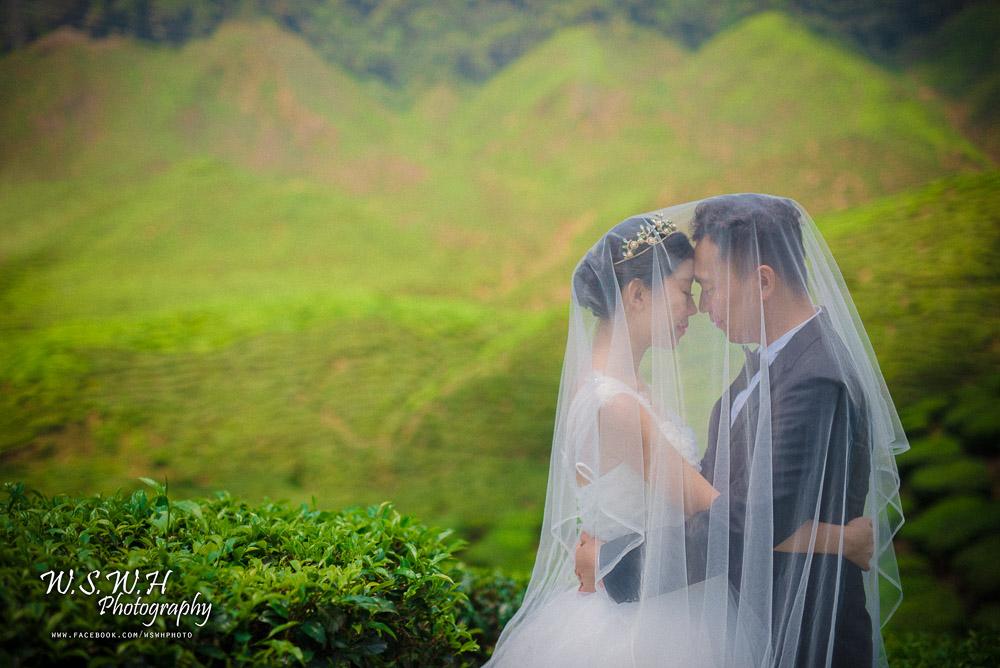 -peng--yuanyuan_26146152860_o